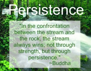 Persistence Amy Johnson Organicabrand